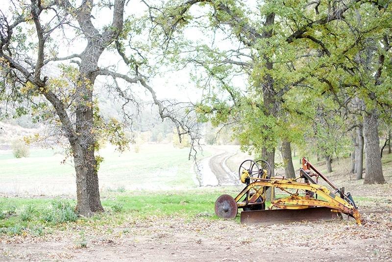 Working Ranch - Sawmill Mountain Vineyards