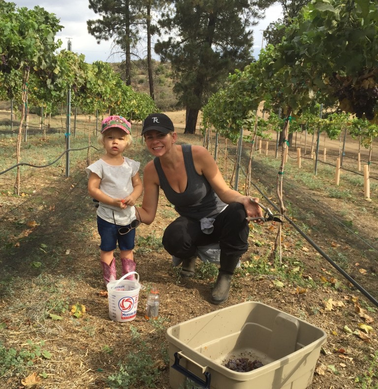 Sawmill Mountain Vineyards - Family Owned & Operated